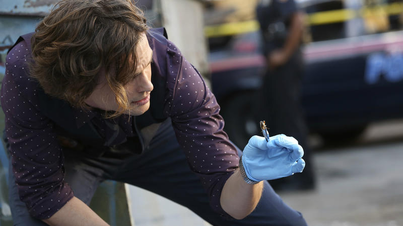 Arquivo confidencial: Spencer Reid